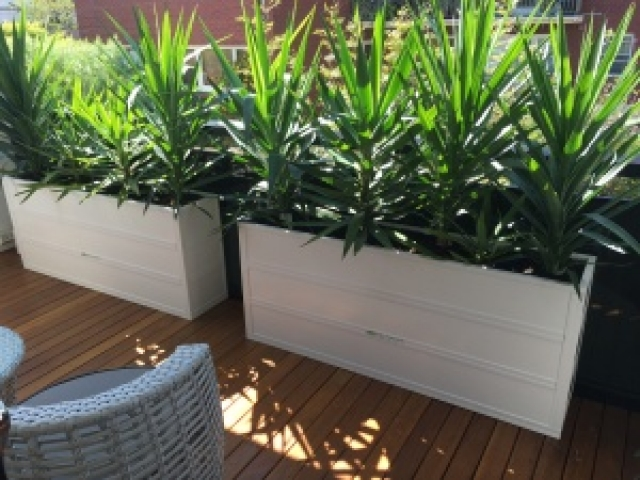 troughs plater