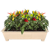 Terrace Planter Boxes