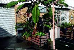 Smart Corner Planter